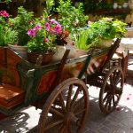 Chania-tour-sightseeing-discover-photograph